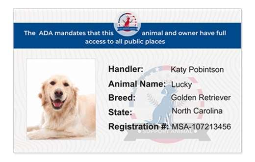 additional ID card