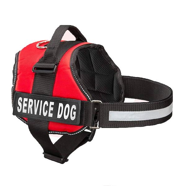 vest MSA harness