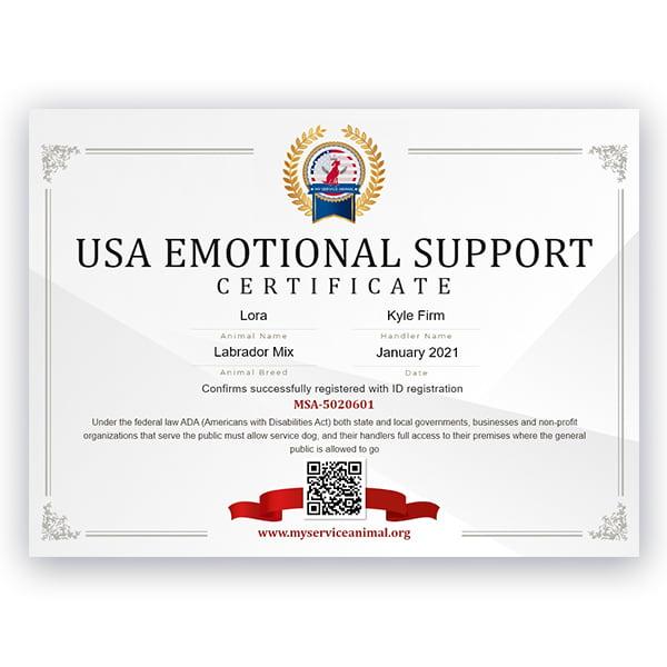 USA ESA Certificate