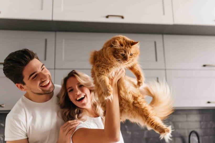 Happy family with ESA cat